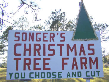 Directions To Songer S Christmas Tree Farm